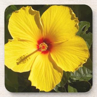 Yellow Hibiscus Drink Coaster