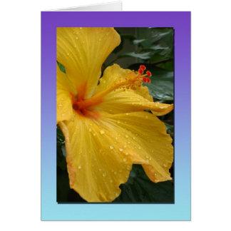 Yellow Hibiscus Notecard