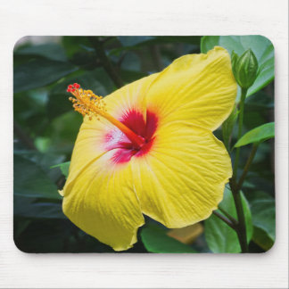 Yellow Hibiscus Sideview Mouse Pad