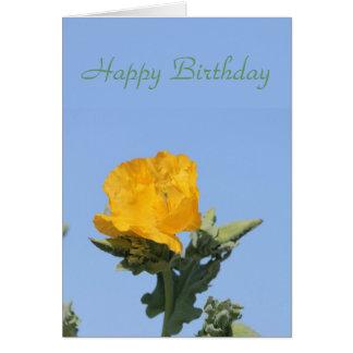 Yellow horned-poppy card