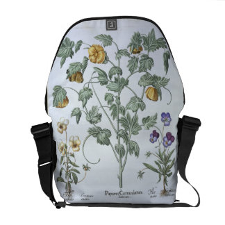 Yellow Horned Poppy, from the 'Hortus Eystettensis Messenger Bags