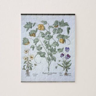 Yellow Horned Poppy from the Hortus Eystettensis Jigsaw Puzzle