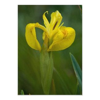 Yellow Iris 13 Cm X 18 Cm Invitation Card