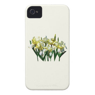 Yellow Irises Flavescens iPhone 4 Covers