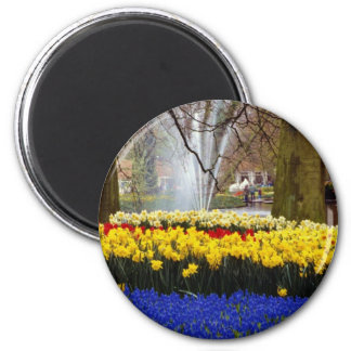 yellow Keukenhof gardens, Amsterdam, Netherlands f 6 Cm Round Magnet