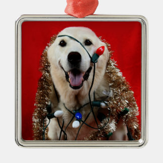 Yellow lab Christmas Christmas Ornament