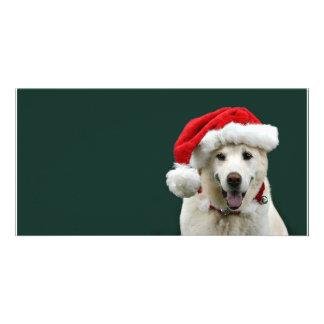 Yellow Lab Christmas Custom Photo Card