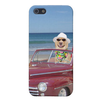 Yellow Lab Driving a Woodie iPhone 5 Case