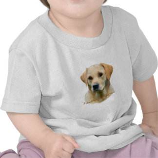 Yellow Lab Fathful Friend for Apparel Shirts