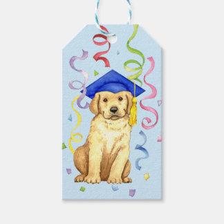 Yellow Lab Graduate