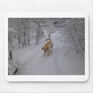 Yellow Lab Playing in Fresh Winter Snow Mouse Mat