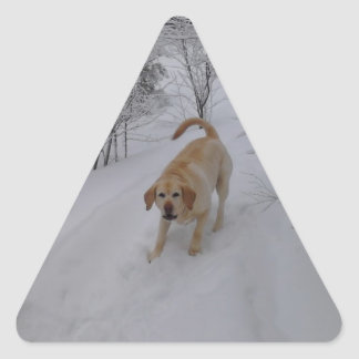 Yellow Lab Playing in Fresh Winter Snow Triangle Sticker