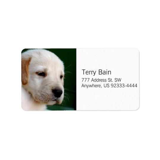 Yellow Lab Puppy Address Label