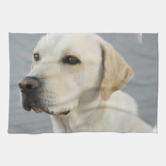 Yellow Lab Towel