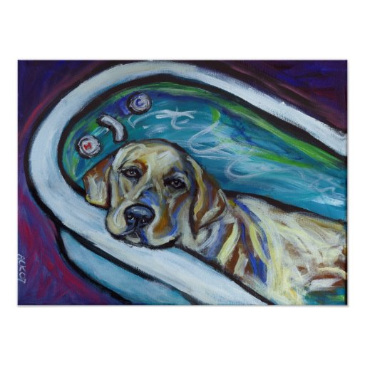 Yellow Labrador bath Poster