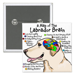 Yellow Labrador Brain Atlas 15 Cm Square Badge
