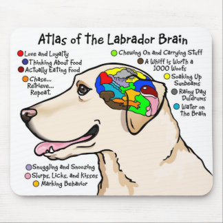 Yellow Labrador Brain Atlas Mouse Pad