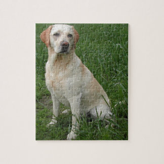 yellow labrador full puzzle