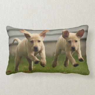 Yellow Labrador Puppies Running Lumbar Cushion