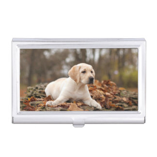 Yellow Labrador Puppy In Autumn Business Card Holder