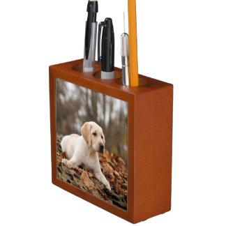 Yellow Labrador Puppy In Autumn Desk Organiser