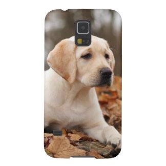 Yellow Labrador Puppy In Autumn Galaxy S5 Cases