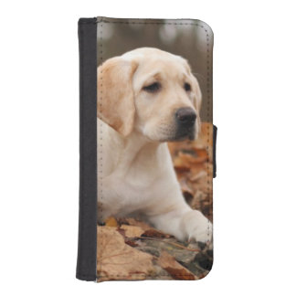 Yellow Labrador Puppy In Autumn iPhone SE/5/5s Wallet Case