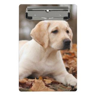 Yellow Labrador Puppy In Autumn Mini Clipboard