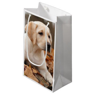 Yellow Labrador Puppy In Autumn Small Gift Bag