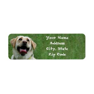 Yellow Labrador Retriever Address Labels