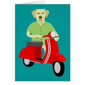 Yellow Labrador Retriever  Cards
