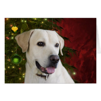 Yellow labrador retriever Christmas Greeting Card