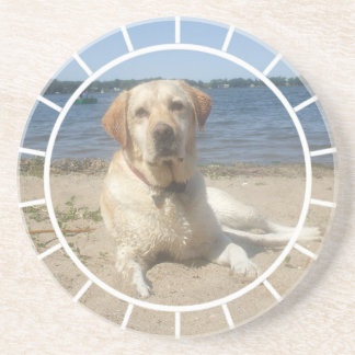 Yellow Labrador Retriever Dog Coaster