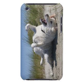 Yellow Labrador Retriever iPod Touch Case