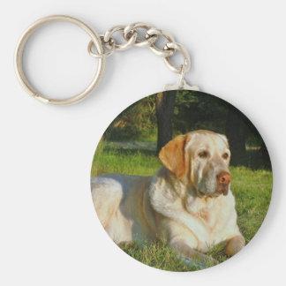 Yellow Labrador Retriever Key Ring