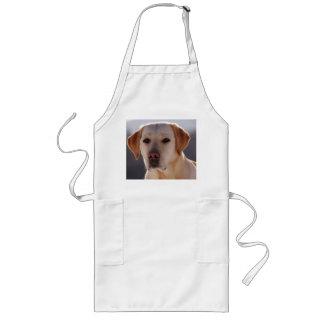 yellow labrador retriever long apron