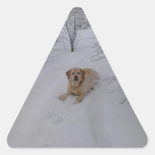 Yellow Labrador Retriever Lying in Fresh Winter Sn Triangle Stickers