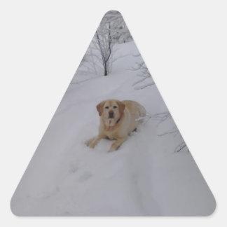 Yellow Labrador Retriever Lying in Fresh Winter Sn Triangle Sticker