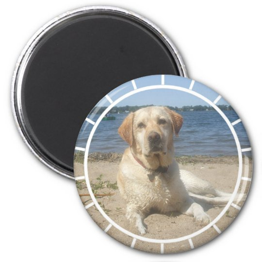 Yellow Labrador Retriever Magnet