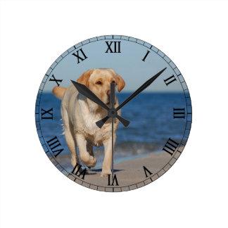 Yellow labrador retriever on the beach wall clocks