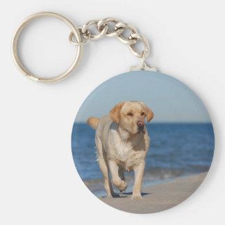 Yellow labrador retriever on the beach key ring