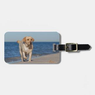 Yellow labrador retriever on the beach bag tags