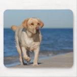 Yellow labrador retriever on the beach mouse mats