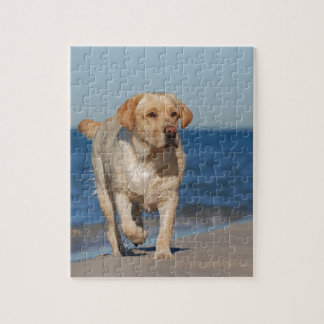 Yellow labrador retriever on the beach puzzle