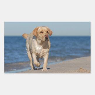 Yellow labrador retriever on the beach rectangular sticker