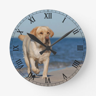 Yellow labrador retriever on the beach wall clocks