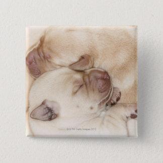 Yellow Labrador Retriever puppies, 10 days old 15 Cm Square Badge