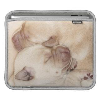 Yellow Labrador Retriever puppies, 10 days old iPad Sleeve