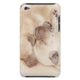 Yellow Labrador Retriever puppies, 10 days old iPod Touch Case