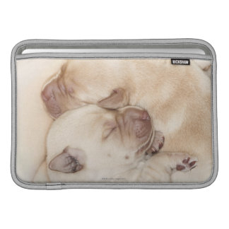 Yellow Labrador Retriever puppies, 10 days old MacBook Sleeve